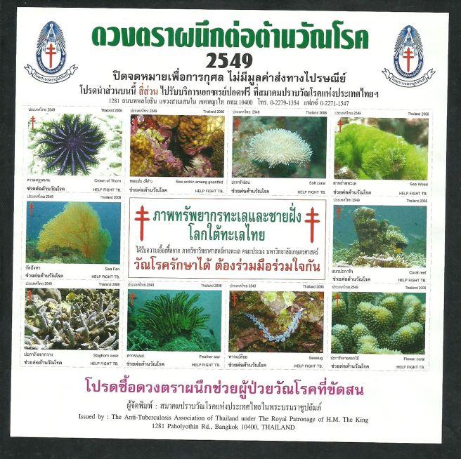 thai_tb_2549