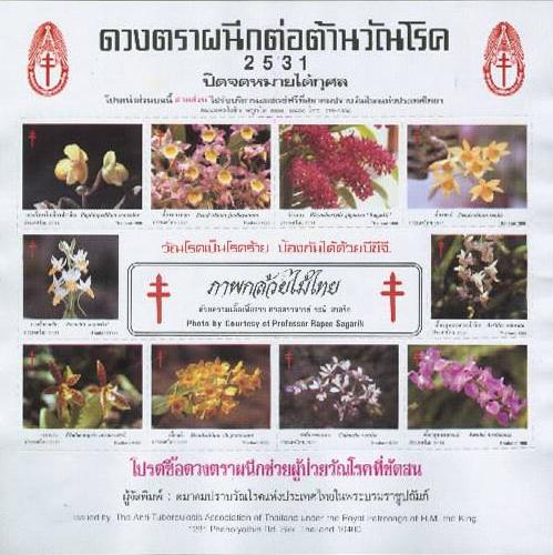 thailand_anti_TBC_2531_1988
