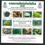 thailand_tb_2549