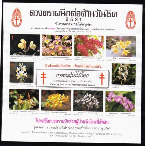thailand_tb_2531